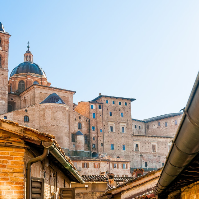 """Cathedral of Urbino"" stock image"