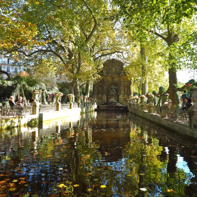 """La Fontaine de Medicis"" stock image"