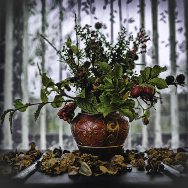 """""""Autumn bouquet"""" stock image"""