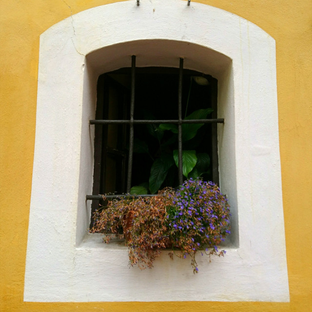 """White window, yellow house"" stock image"