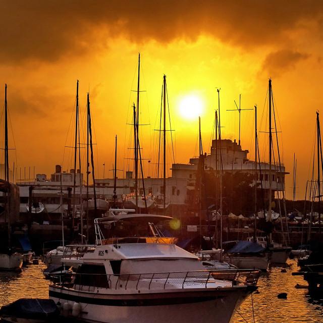 """""""Hong Kong Yacht Club"""" stock image"""