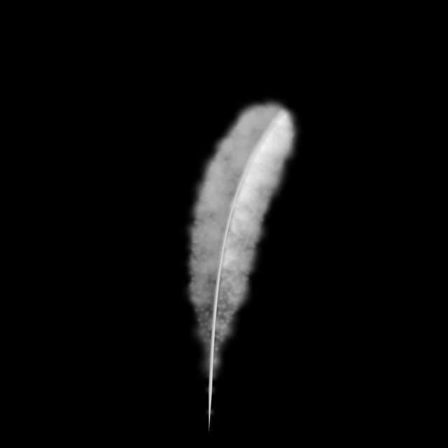"""White Feather isolated on Black Background"" stock image"