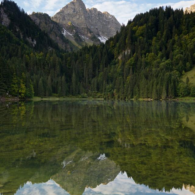 """""""Lac des Plagnes"""" stock image"""