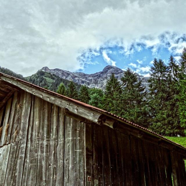 """Swiss Cow Shed"" stock image"