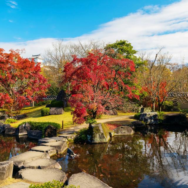 """""""Koko-en autumn garden in Himeji"""" stock image"""