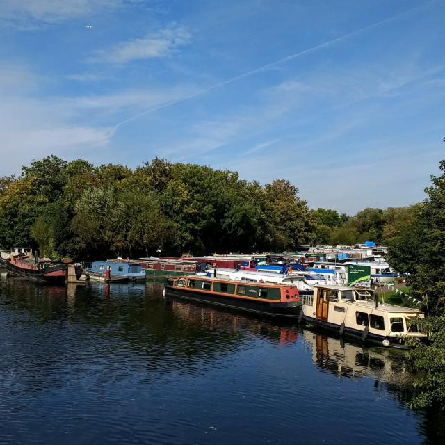"""""""Springfield Marina, Hackney, London"""" stock image"""
