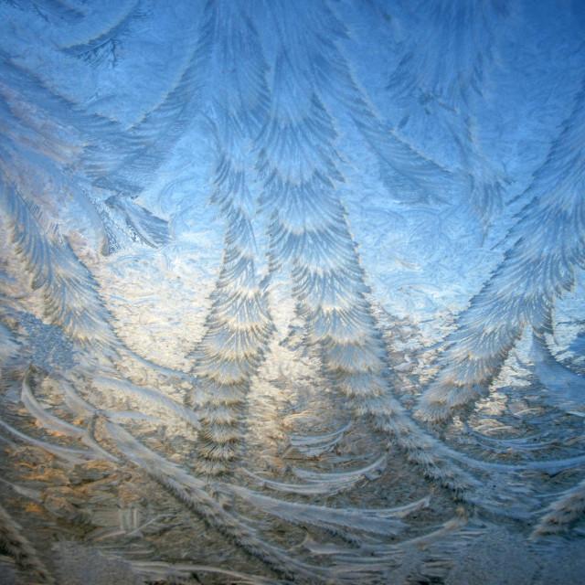 """Frosty Window"" stock image"