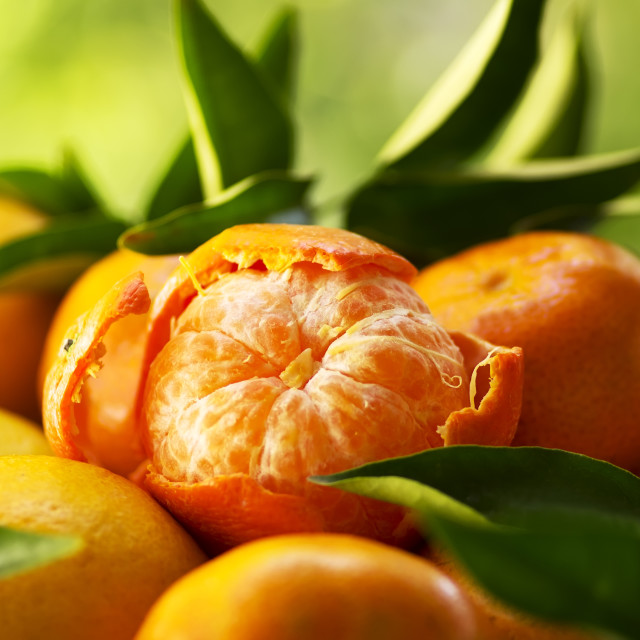 """""""tangerines, peeled tangerine on a green background"""" stock image"""