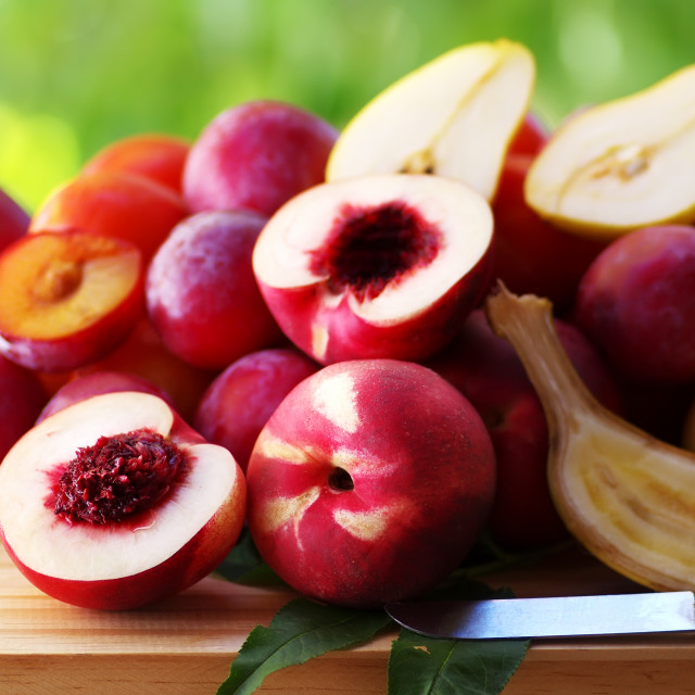 """ripe nectarines and plums on table"" stock image"
