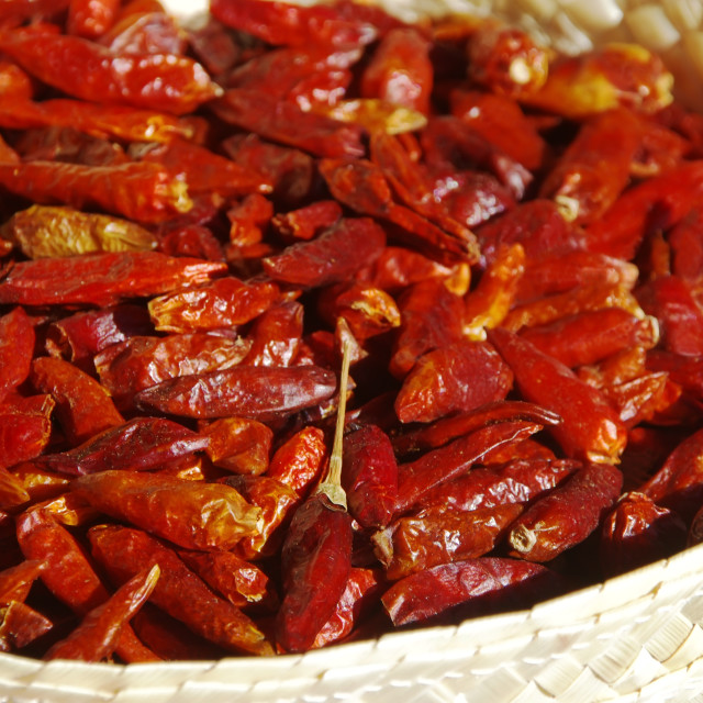 """Dried Red Peppers Piri-Piri, close up"" stock image"