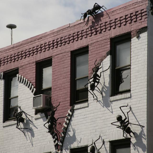 """Ant wall, Philadelphia, PA"" stock image"