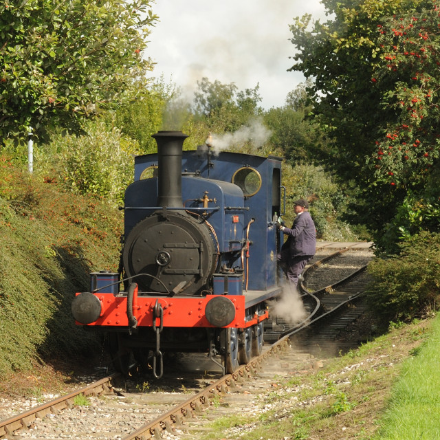 """Manning Wardle 0-6-0 'Matthew Murray'"" stock image"