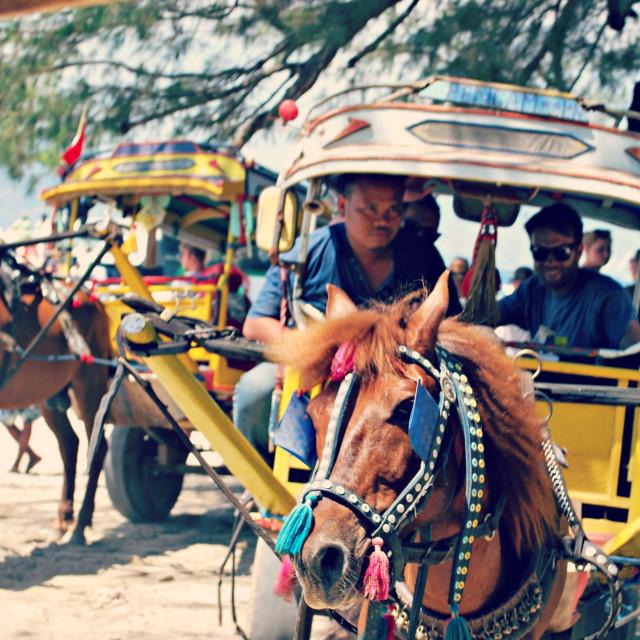 """Horse & Cart - Gili Islands"" stock image"