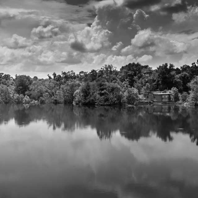 """""""Black and White in the Reflection"""" stock image"""