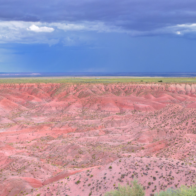 """Petrified Forest National Park, USA."" stock image"