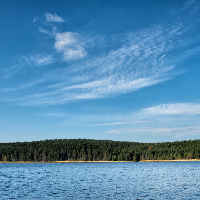 """lake surface with forest and trees"" stock image"