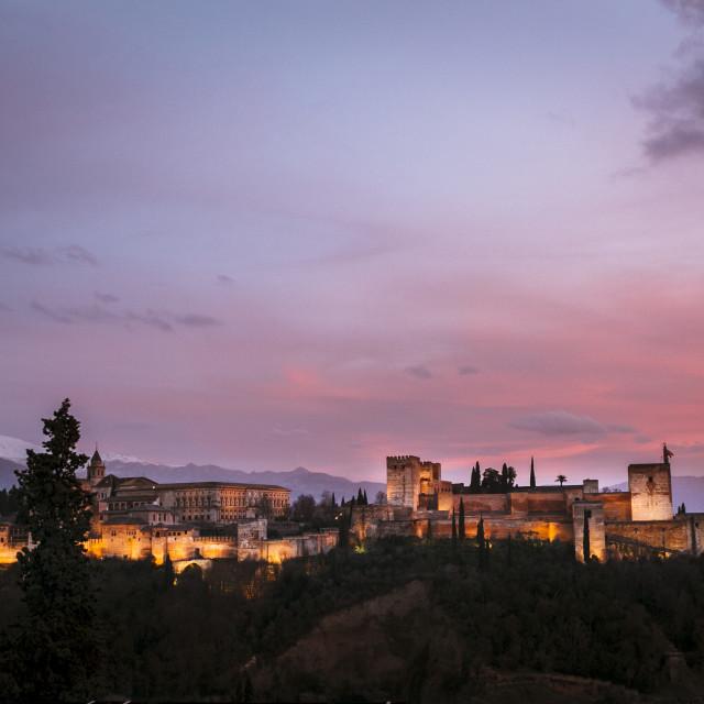 """La Alhambra"" stock image"