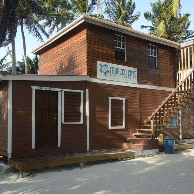"""Tobacco Caye Marine Station"" stock image"