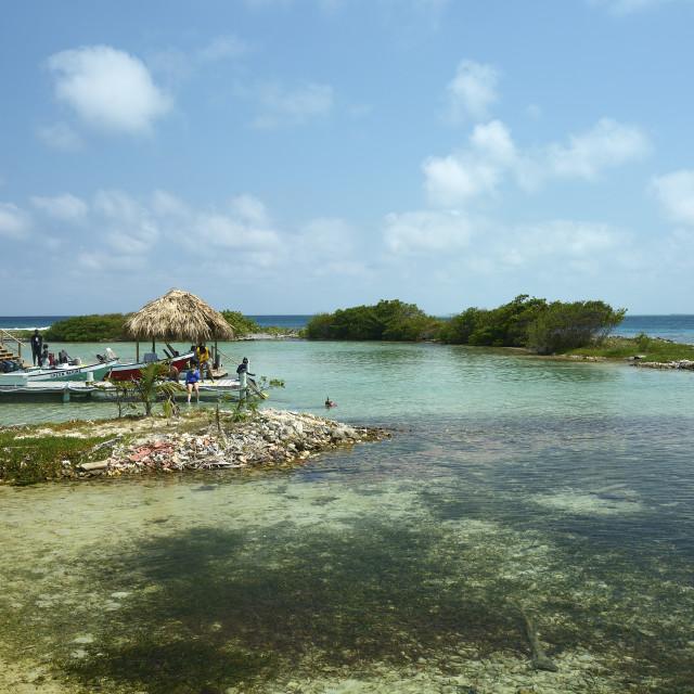 """""""Tobacco Caye in Belize"""" stock image"""