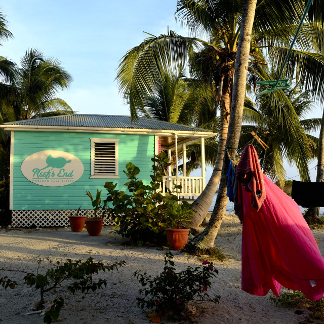 """Reef's End Resort at Tobacco Caye in Belize"" stock image"