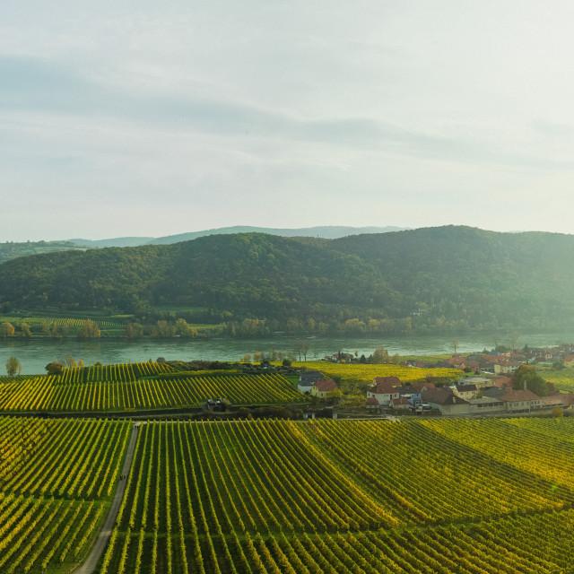 """Wachau Autumn Panorama"" stock image"