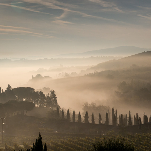 """A misty valley in Tuscany"" stock image"