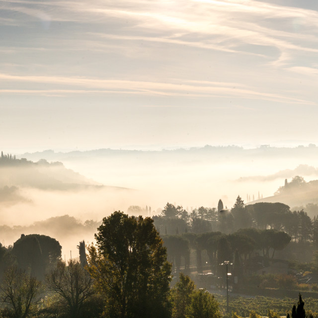 """A misty morning in Tuscany"" stock image"