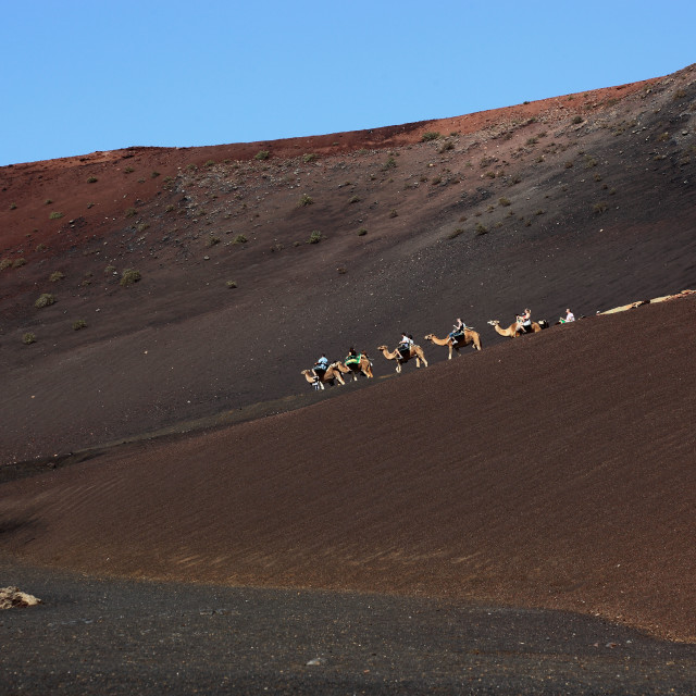 """""""Spain, Island of Lanzarote, Canary Islands, Canaries"""" stock image"""