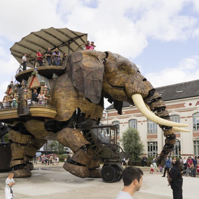"""Grand Elephant"" stock image"
