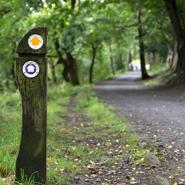 """""""Walking Trail"""" stock image"""