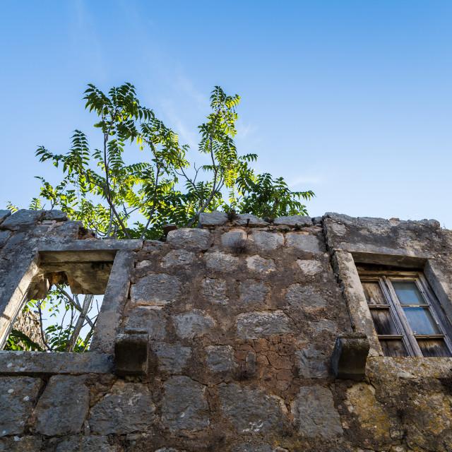 """""""Building in the ghost village of Gornja Nakovana"""" stock image"""