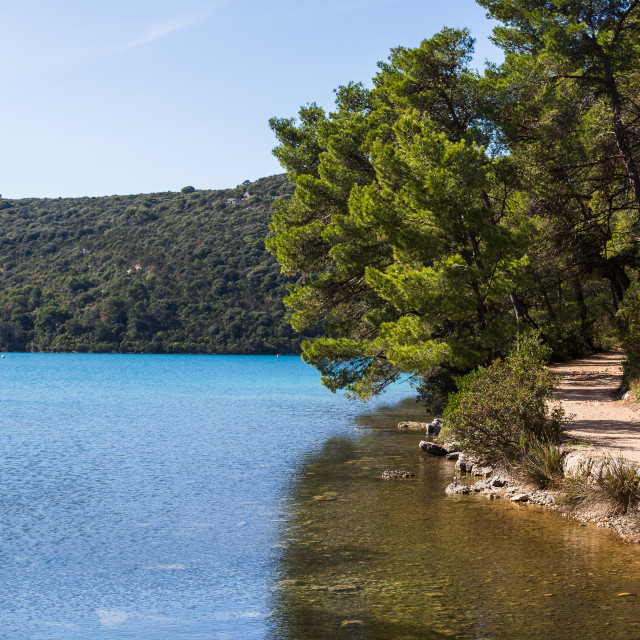 """Exploring the green island of Mljet"" stock image"