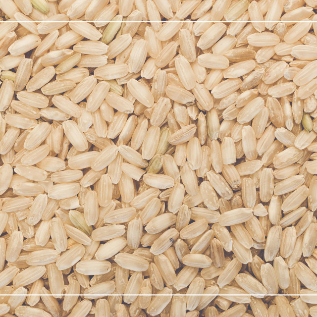 """wholemeal rice grains"" stock image"