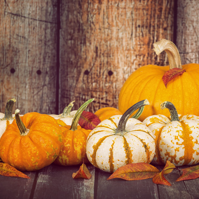 """Pumpkins and autumn leaves against rustic wooden background"" stock image"