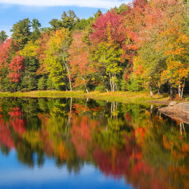 """Autumn foliage reflections in pond on a sunny fall day in New En"" stock image"