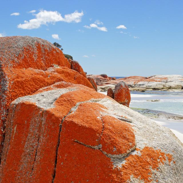 """Bay of Fires, Tasmania, Australia"" stock image"