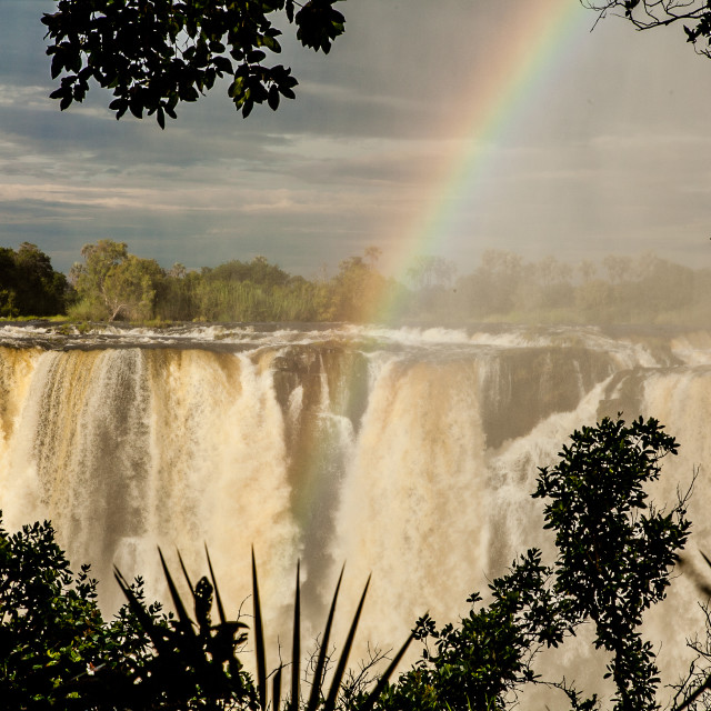 """Face to face with Victoria Falls"" stock image"