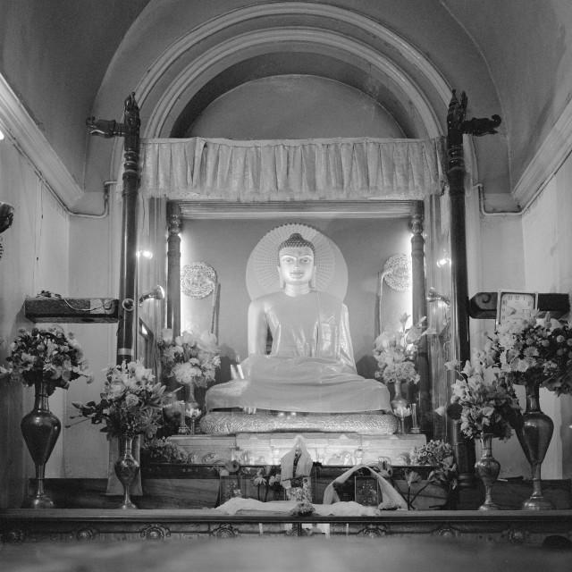 """""""Central Buddha, Bodgaya, India"""" stock image"""