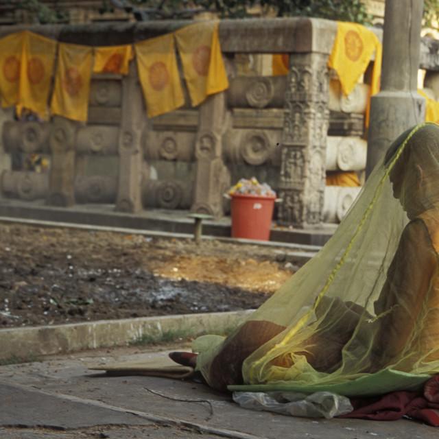 """Nun under net, Bodgaya, India"" stock image"