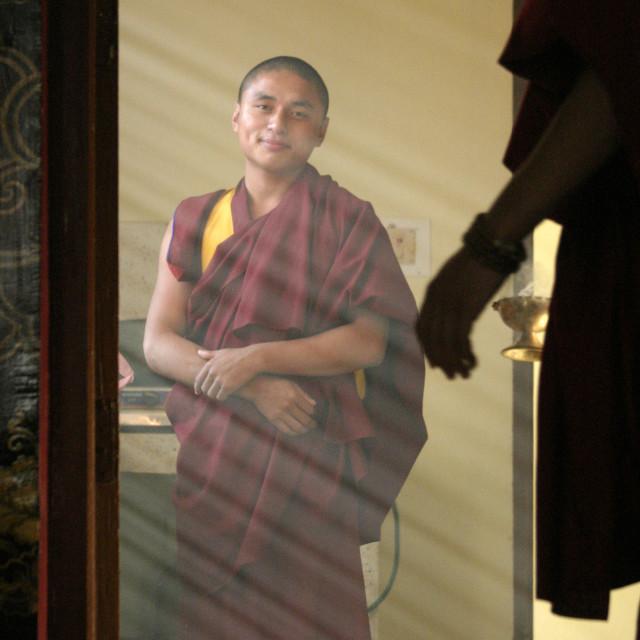 """Monk, Sechen Monastery, Bodh Gaya, India"" stock image"