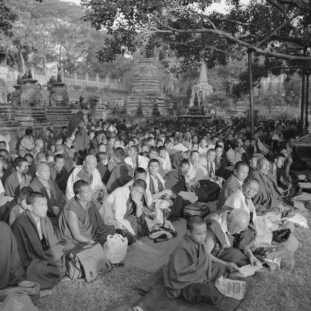 """""""Monks, Kargyu Monlum, Bodh Gaya"""" stock image"""