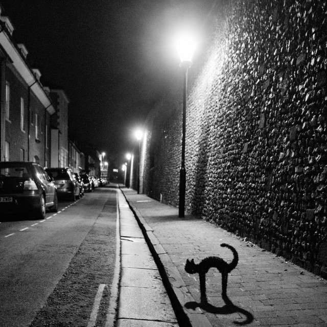 """Black Cat at night on a gothic street"" stock image"