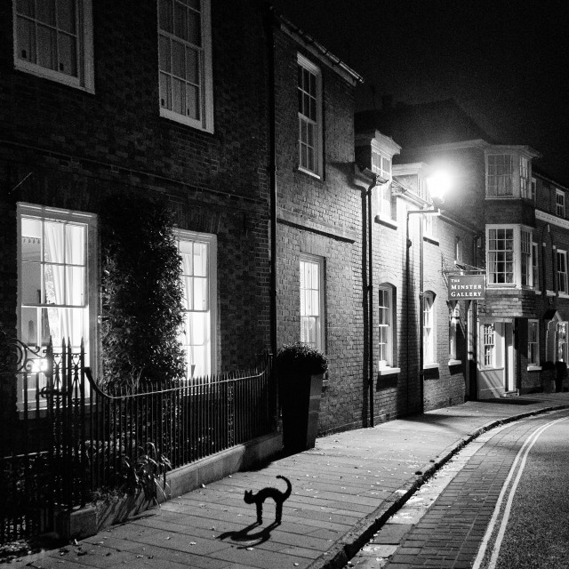"""A Black cat on a pretty street at night"" stock image"