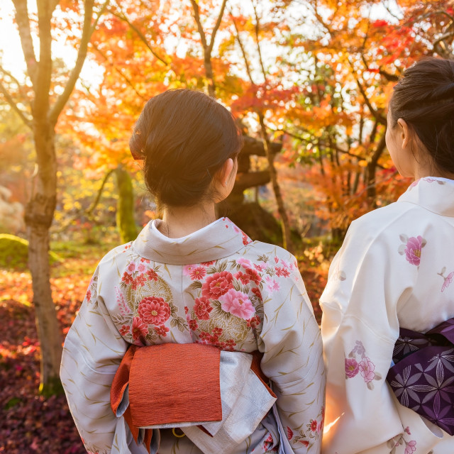 """Rear photo of Kimono girls in autumn"" stock image"