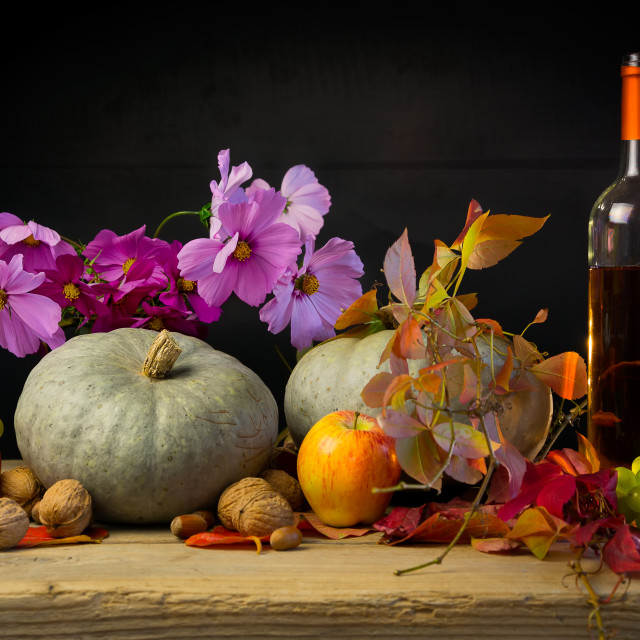 """The treasures of the autumn"" stock image"