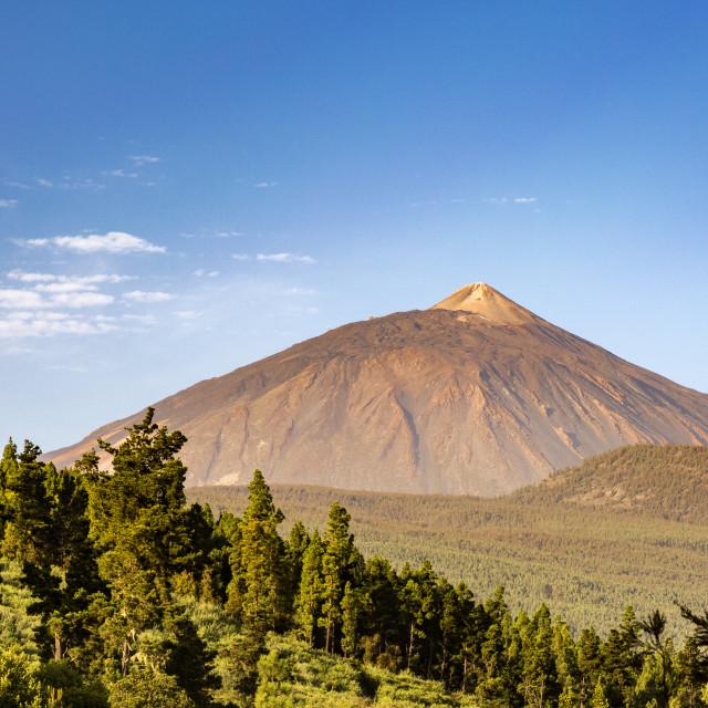 """""""Pico del Teide"""" stock image"""