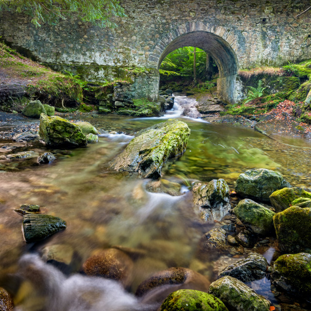"""Shimna River ~ Ireland"" stock image"
