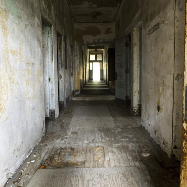 """""""Ellis Island Hospital Hallway"""" stock image"""