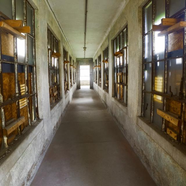 """Ellis Island Hallway (vertical)"" stock image"