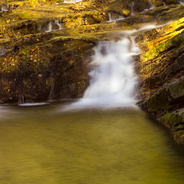 """""""Orvenco creek"""" stock image"""